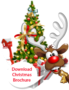 download-christmas-brochure